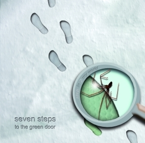 SEVEN STEPS TO THE GREEN DOOR - Step In 2 My World
